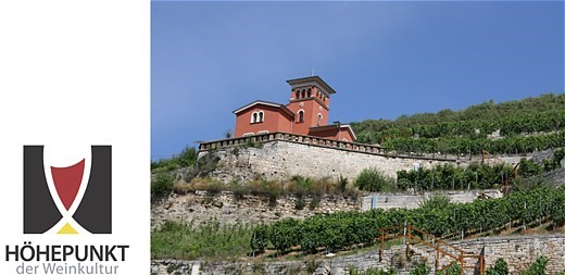 They are the trademarks of the wine area Saale-Unstrut: the historical vineyard cottages.