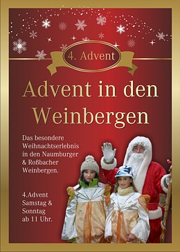 Advent in den Weinbergen -