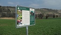 Weinlehrpfad Saale-Unstrut  -